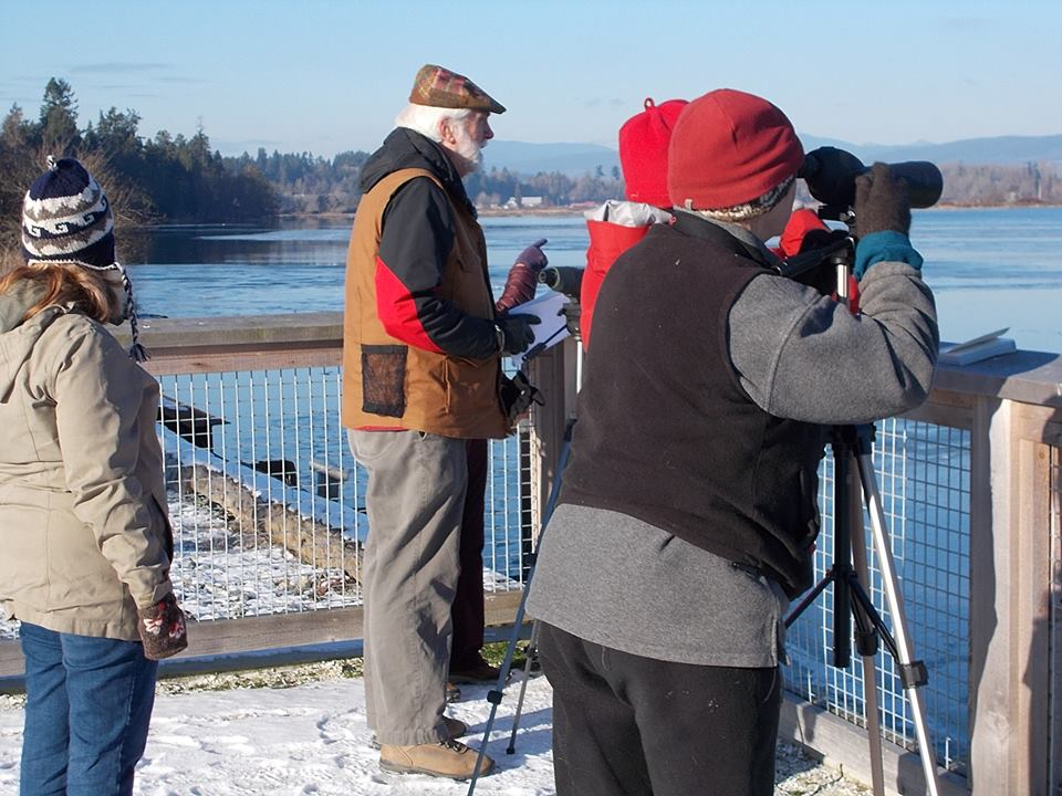 waterbirdcount
