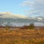 Mt.-Provost,-Duncan,-B.C.